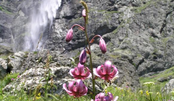 Централен Балкан, Национални паркове, Калофер, Забележителности Калофер, Забележителности Стара планина