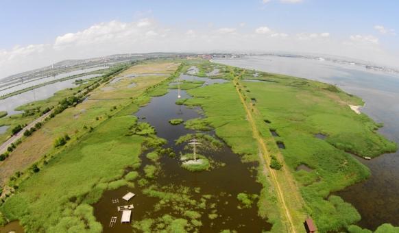Защитени местности, Резервати, Забележителности, Пода, БДЗП, Бургас, Птици, Наблюдение на птици, Птиче богатство, Природозащитен център