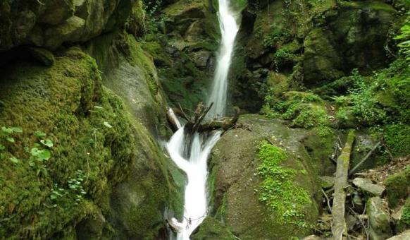 Natural parks Natural Park Belasitsa